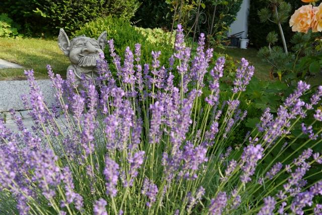 Gartengestaltung neuhold gartengestaltung und baumschule for Gartengestaltung firma